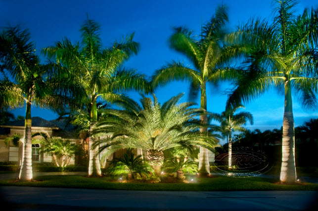 Malibu Lights Orange County Landscape