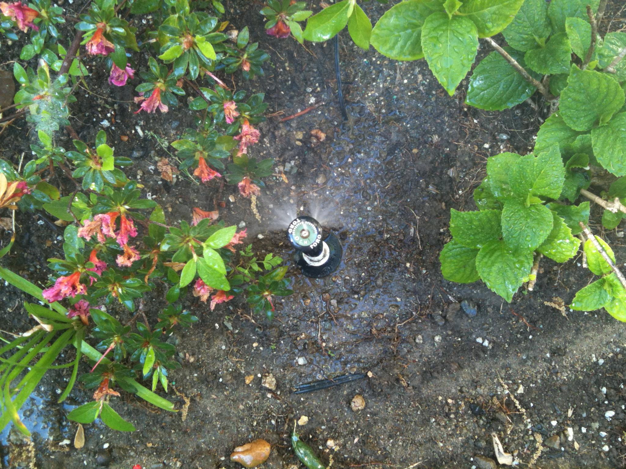 Sprinkler Systems Orange County