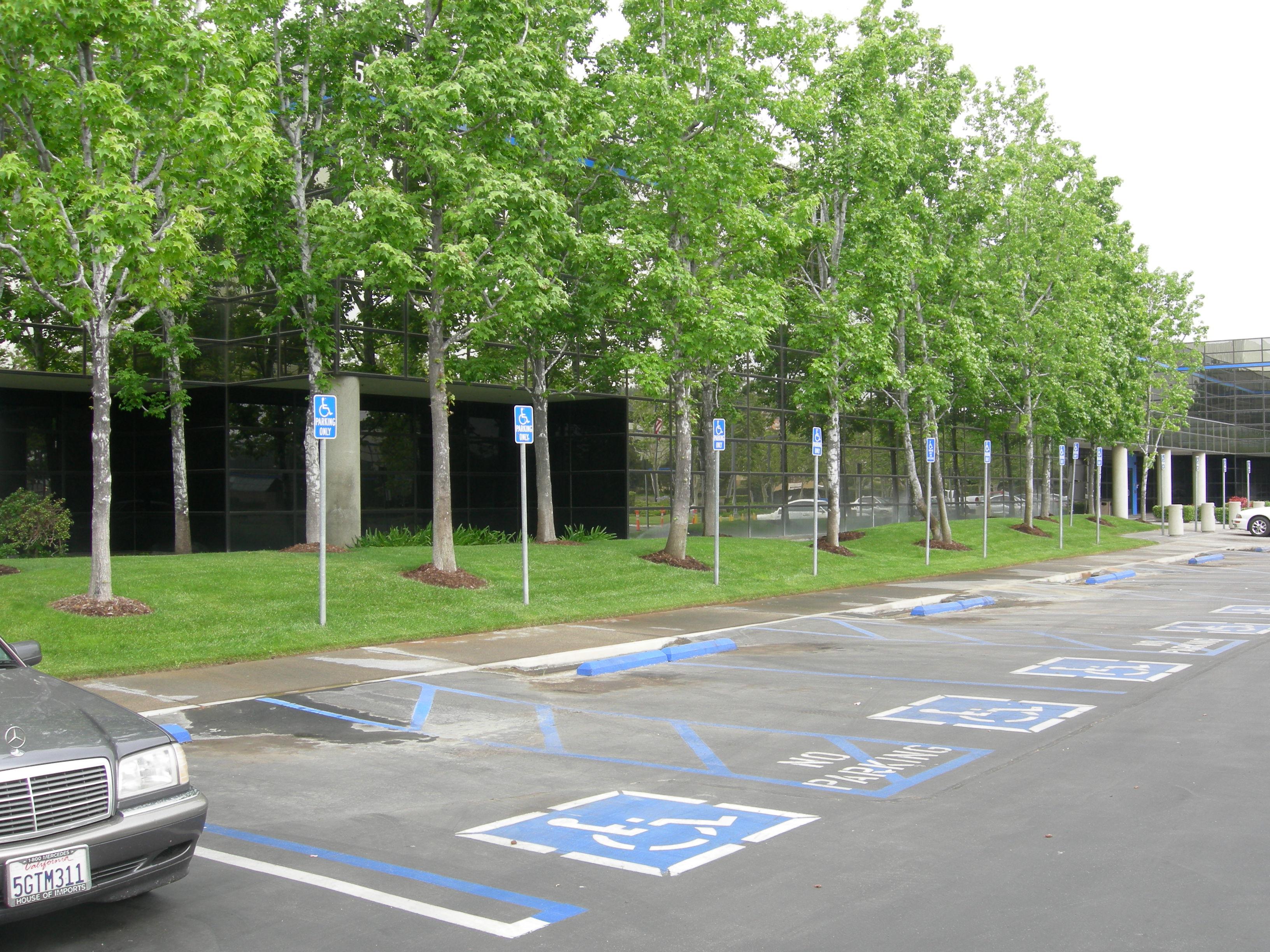 Orange County Landscape Maintenance
