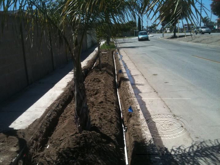 Orange County Lawn Installation