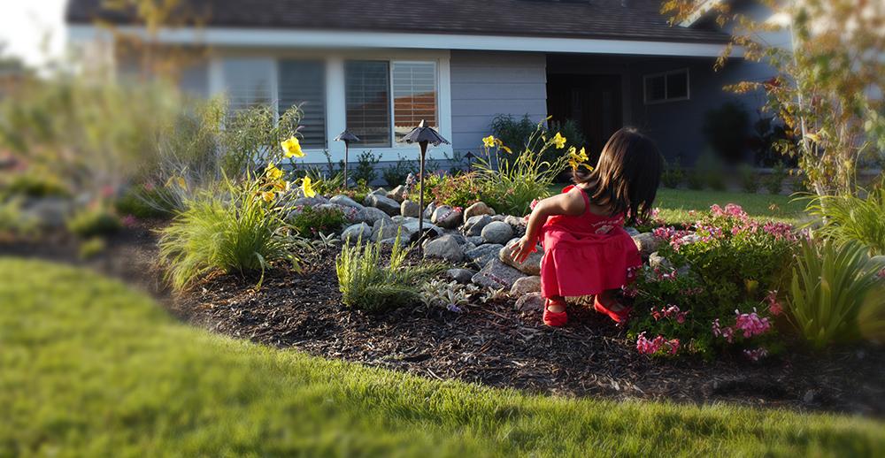 Green And Gorgeous Providing Garden Services Garden